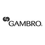 gambro_logo_blue